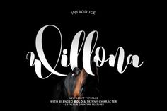 Willona Typeface by COB on @creativemarket