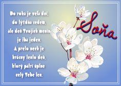 Soňa Do roka je veľa dní, do týždňa sedem, ale deň Tvojich menín je iba jeden. A preto nech je krásny tento deň, ktorý patrí úplne celý Tebe len.