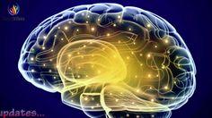 Activate Brain to 100% Potential ✔ Gamma Binaural Beats ✔ Genius Brain F...