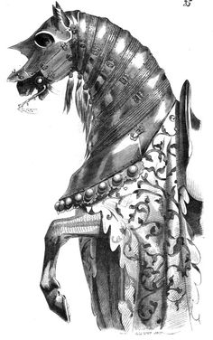 Rocinante, horse of Don Quixote.   In chapter 1, Cervantes describes Don Quixote's careful naming of his steed: Four days were spent in thinking what name to give him, because (as he said to himself) it was not right that a horse belonging to a knight so famous, and one with such merits of his own, should be without some distinctive name, and he strove to adapt it so as to indicate what he had been before belonging to a knight-errant, and what he then was.