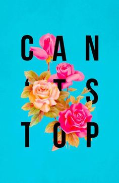 Can't Stop Won't Stop | Linzeelu Thank You