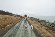 Uløya Country Roads, Photography, Photograph, Photo Shoot, Fotografie, Fotografia