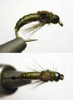 FlyTyingForum.com - Rhyacophila