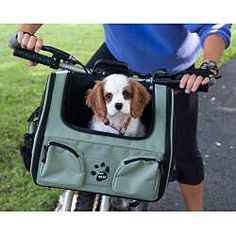 @Overstock - A three-in-one pet travel carrier can make traveling with your small pet a bit easier. It can be used to carry your pet over your shoulder, secured with a seat belt in the car, or used on your bike with the free universal bike adapter.http://www.overstock.com/Pet-Supplies/Pet-Gear-Ultimate-Pet-Traveler/5622019/product.html?CID=214117 GBP              63.51