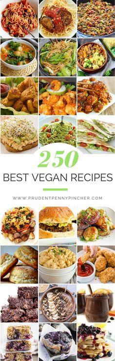 250 Best Vegan Recipes
