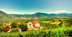 Italian Vineyards... wine tasting at its finest! Northern Italy nam nam