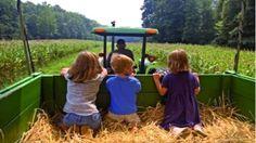 aprire fattoria didattica conviene