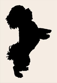Bischon Dog **Reusable Stencil** sizes available- Create Bichon Dog Pillows or Cottage Signs Dog Stencil, Stencil Art, Stencil Designs, Silhouette Painting, Dog Silhouette, Bichon Dog, Dog Quilts, Cottage Signs, Favorite Paint Colors