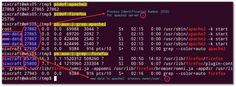 Fig.01: Find the process ID (PID) of a running firefox program and apache2 server.