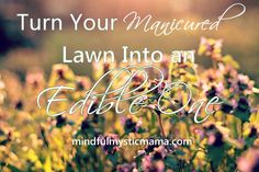 Turn Your Manicured Lawn Into an Edible One #gardening #landscaping #lawncaretips