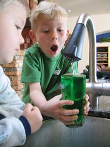 Leprechauns turn your tap water green (with the help of color change tablets screwed into the faucet)!  Completely safe, but would be fun even if you chose not to let the kids drink the water!