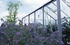 Den Traum vom eigenen Gewächshaus wahr machen. Worauf es akommt - http://www.hobbygarten.de/tipps/den-traum-vom-eigenen-gewaechshaus-wahr-machen/