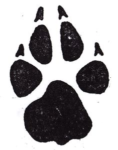 paw prints . this is the tattoo on my back !
