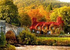 Beautiful North Wales Home in Autumn home autumn house fall ivy england uk covered united kingdom britain wales Fall Pictures, Fall Photos, Fall Pics, Random Pictures, Funny Pictures, Places Around The World, Around The Worlds, Beautiful World, Beautiful Places