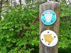 A 12 mile circular Newburn Farm Kington walking route in Herefordshire along the original Offas Dyke. Epping Forest, Walking Routes, Herefordshire, Walks, Trail, Hiking Trails, Woking