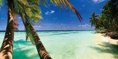 Beach View with Palm Trees 2 - Dream Cubicle