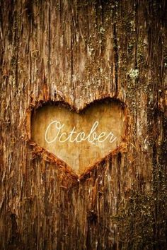 October my favorite month of the year.
