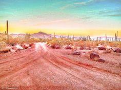 http://fineartamerica.com/featured/sunset-organ-pipe-cactus-national-monument-bob-johnston.html