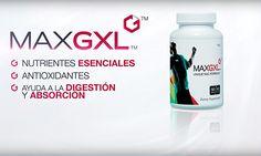 MaxGXL de Max International cuenta con una fórmula exclusiva de N-acetil-cisteína (NAC), diseñada especialmente para brindarle al cuerpo los nutrientes que necesita para mantener sus niveles deglutatión, una molécula esencial para ayudar a mantener la buena salud.