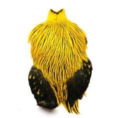 Brahma yellow