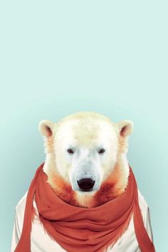 pinterest: @jaidyngrace  Ice Bear ★ Celebrate World Animal Day and download more cute Android and iPhone Wallpapers @prettywallpaper