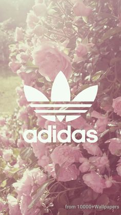 Find images and videos about flowers, wallpaper and adidas on We Heart It - the app to get lost in what you love. Adidas Backgrounds, Cute Wallpaper Backgrounds, Tumblr Wallpaper, Wallpaper Downloads, Cute Wallpapers, Pattern Wallpaper, Adidas Iphone Wallpaper, Nike Wallpaper, Iphone Background Wallpaper