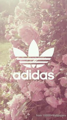 Adidas, fleurs, violine