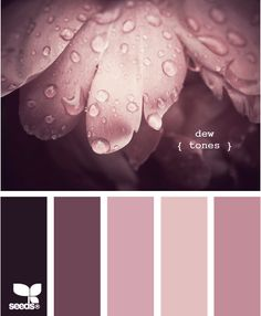 "Dew Tones: Makes me think of Steel Magnolias, when they ask Shelby what her wedding colors are, she replies with, ""Blush and Bashful""....definitely taking ""pink and pink"" to a whole 'nother level"