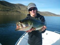 The golden state fishing trips are fairly thrill throughout spare times.