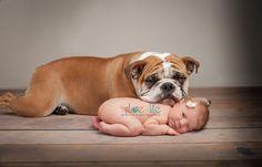 Newborn and bulldog.