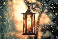 Lantern in the snow.