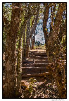Sendero en: El fuerte-Samaipata Santa Cruz Bolivia ;) gracias Cecy
