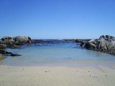 Cape Town Beaches 17 | CABS Car Hire | www.cabs.co.za