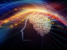 Magic Trick Helps Scientists Study How Brain Perceives the Body | Psych Central News https://link.crwd.fr/16Kt