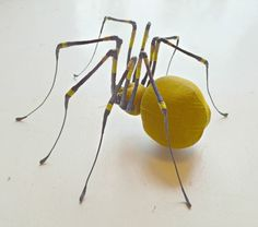 summer spider med -This is by Mister Finch a Leeds based textile artist. I'm not keen on spiders but this is so cool