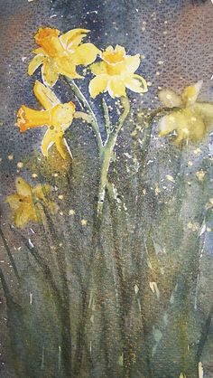 Daffodils -  Original watercolour painting by CPascoeWatercolours on Etsy