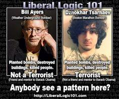 liberal-logic-101-399