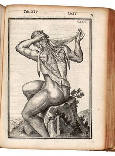 De humani corporis fabrica, Spiegel, Adriaan van de, 1578-1625  ++ and 4500 more vintage medical illustrations on this website! ++