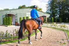 Indoor Riding Arena Envy: Gornall Equestrian - STABLE STYLE Equestrian Stables, Horse Stables, Horse Barns, Horses, Dream Stables, Dream Barn, Indoor Arena, Horse Crafts, Horse Photography