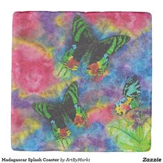 Madagascar Splash Coaster Stone Coaster