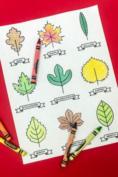 An autumn leaf kids printable with 101 uses! We made a coloring page, a leaf art garland, a collector's book and more! art projects for kids coloring pages Freebie: A Printable Leaf Activity Kit Autumn Leaves Craft, Autumn Art, Autumn Theme, Fall Preschool, Preschool Crafts, Kid Crafts, Leaf Crafts Kids, Fall Crafts For Toddlers, Toddler Crafts