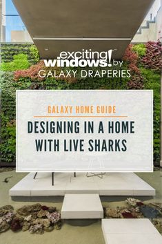 When you think of your dream house does it include an indoor #SHARK TANK? We got to work in an amazing new #HollywoodHills home listed by agent Sam Real that has EIGHT live sharks as part of the design. Check out our photos of the inside and watch the fun tour by 12-year-old Evan Soto!