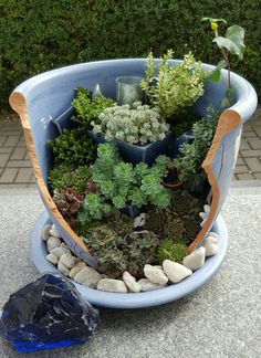 You can get an idea from our page for stylish and perfectly designed pots for your plants and flowers in your garden. Succulent Gardening, Garden Planters, Planting Succulents, Garden Deco, Fairy Doors, Miniature Fairy Gardens, Cactus, Raised Garden Beds, Bird Houses