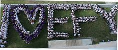 love efy