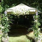 Versiering #bruiloft bruidsprieel Landgoed Duin en Kruidberg. (Gemaakt door www.bloemenweelde-amsterdam.nl)