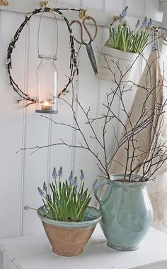 VIBEKE DESIGN: First Signs of Spring ... indoors!