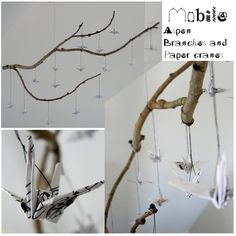 Crane & Branch Mobile