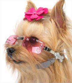 K9 Optics Dog Sunglasses