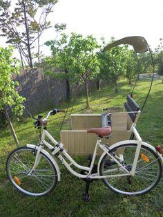 Cochecito chino pedicab