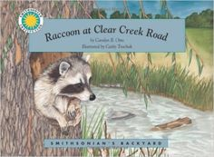 Raccoon at Clear Creek Road (Smithsonian's Backyard); raccoon books; about raccoons